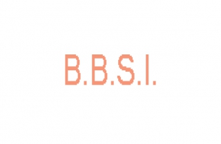 BBSI  Belgium Business Services Int'l